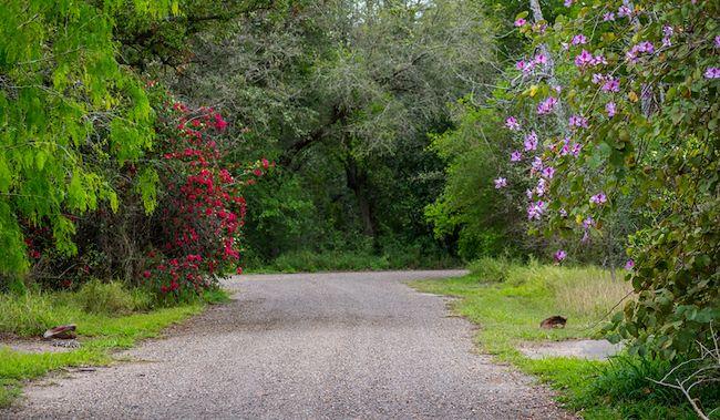 Weslaco Valley Nature Center