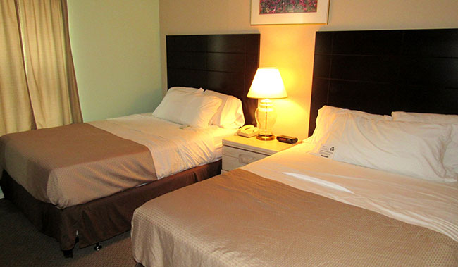 Victoria Palms Inn & Suites, Donna Standard Double Room